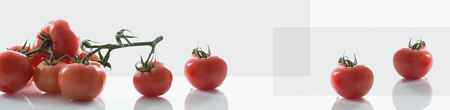 nischenverkleidung_dekor-tomaten